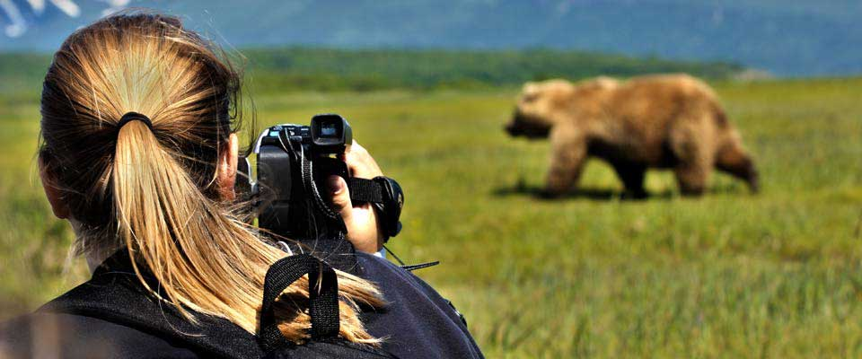 Best Photo Tours For Grizzly Bears